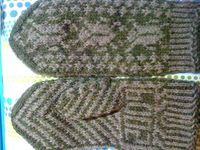 Entomology mittens