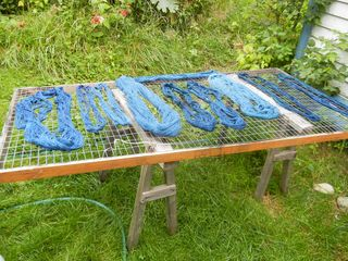 Indigo really good drying pic