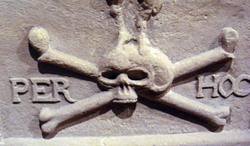 Skull_6