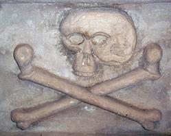 Skull_7