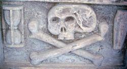 Skull_8
