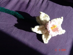 Daffodils_unfelted_001_standard_email_vi