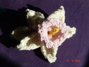 Daffodils_unfelted_002_standard_email_vi