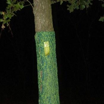 K_memorialtree