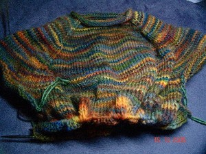 Merlins_sweater_progress_standard_email_