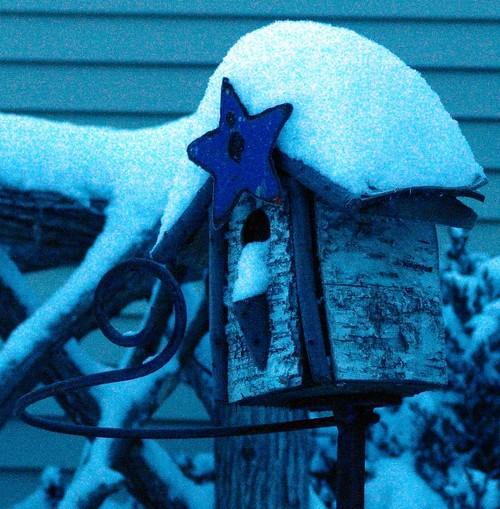 Snowy_birdhouse